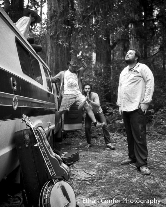 CC_Redwoods2-3